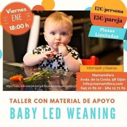 Taller de Baby Led Weaning - 11 enero